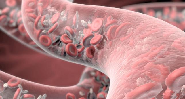 PRP Therapie Eigenblut Behandlung